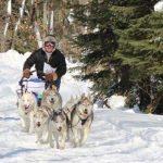 Seguin Sled Dog Mail Run