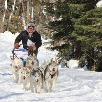 Seguin Sled Dog Mail Run